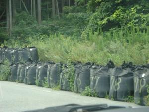 道脇廃棄物