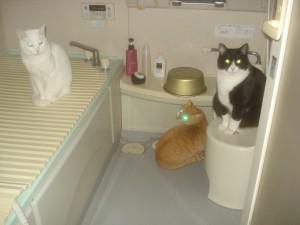 みんなで一っ風呂あびようか