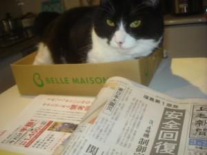 箱の中から新聞を逆に読む?